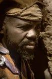 Mali, wioska i typowi borowinowi budynki, Afryka, Dogon - Zdjęcie Royalty Free