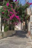 Malia街道在克利特 免版税库存照片