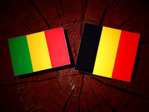 Malian flag with Belgian flag on a tree stump isolated. Malian flag with Belgian flag on a tree stump Stock Photography