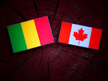 Malian flag with Canadian flag on a tree stump isolated. Malian flag with Canadian flag on a tree stump Royalty Free Stock Photos