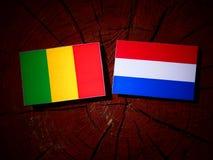 Malian flag with Dutch flag on a tree stump isolated. Malian flag with Dutch flag on a tree stump royalty free stock photos