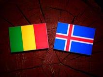 Malian flag with Icelandic flag on a tree stump isolated. Malian flag with Icelandic flag on a tree stump Royalty Free Stock Photography