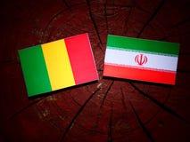 Malian flag with Iranian flag on a tree stump isolated. Malian flag with Iranian flag on a tree stump Stock Photo