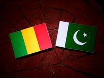 Malian flag with Pakistan flag on a tree stump isolated. Malian flag with Pakistan flag on a tree stump royalty free stock photos