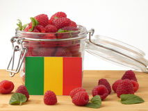 Malian flag on a wooden panel with raspberries isolated on a whi. Te background stock photos