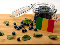 Malian flag on a wooden plank with blueberries on white. Malian flag on a wooden plank with blueberries stock photography