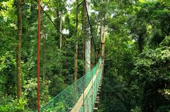 MALIAU BASIN. Or also  Conservation Area, is a region in Sabah, Malaysia, which represents a geological catchment surrounding the Maliau River stock photography