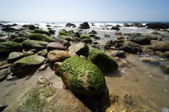 Malibu Beachscape 8. Wide angle landscape of Malibu Beach in California showing algae covered rocks Royalty Free Stock Photography