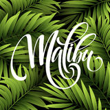 Malibu California handwriting lettering on the palm leaf tropical background. Vector illustration. EPS10 Stock Photography