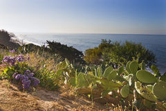 Malibu coast Stock Image