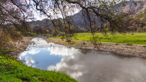 Malibu Creek. In Southern California at the  State Park royalty free stock image