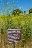 Malibu Creek State Park -  May 11, 2019: Signs protect the recovering trees and plants of Malibu Creek State Park in the Spring stock image