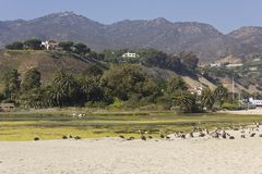 Malibu hills landscape in the summer Stock Photography