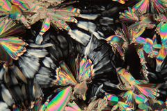 Malic acid under the microscope. (magnification 80x and polarized light Stock Image