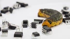 Malicious computer worm Stock Photos