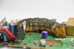Malicious computer worm. That secretly ruining your computer Stock Image