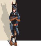 Malicious dog Stock Image