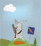 Malicious rabbit protecting Royalty Free Stock Photo