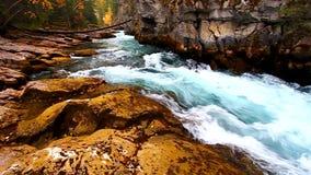 Maligne峡谷加拿大小瀑布  股票录像