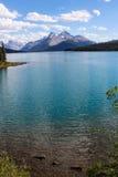 Maligne湖,碧玉国家公园 库存照片