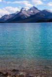 Maligne湖,碧玉国家公园 库存图片