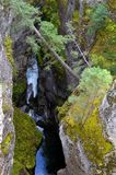 Maligne Canyon. Picture of the famous Maligne Canyon at Jasper Nationalpark. Alberta. Canada Stock Photography