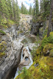 Maligne Canyon. In Alberta Canada Royalty Free Stock Photography