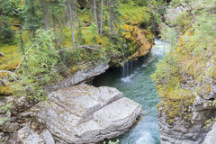 Maligne Canyon. In Alberta Canada stock images