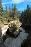 Maligne Canyon. The Maligne Canyon in the Jasper National park in Alberta Canada Royalty Free Stock Photography