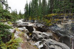 Maligne canyon. In Jasper national park, Alberta, Canada Royalty Free Stock Photography