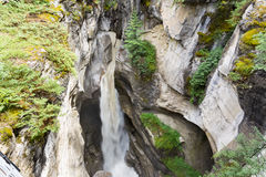 Maligne Canyon. In the Jasper national park, Alberta, Canada Stock Photos