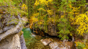 The Maligne Canyon in Jasper National Park. The Maligne River as it flows through the deep gorges of the Maligne Canyon in Jasper National Park in Alberta Canada Stock Image