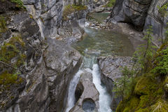 Maligne canyon 0691 Royalty Free Stock Photos