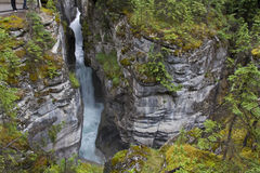 Maligne canyon 0702. Maligne Canyon at Jasper Nationalpark. Alberta. Canada Royalty Free Stock Images