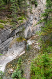 Maligne Canyon. River in Maligne Canyon in Jasper in Canada Royalty Free Stock Photo