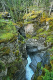 Maligne Falls through the narrow Maligne Canyon Royalty Free Stock Images