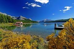 Maligne jezioro z pięknym spadku kolorem Fotografia Stock