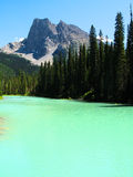 Maligne Lake. Green waters of Maligne Lake Royalty Free Stock Images