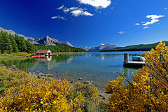 Maligne Lake with beautiful fall color Stock Photography