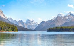 Maligne Lake view. Maligne Lake in Jasper national park, Alberta, Canada Royalty Free Stock Photography