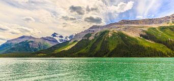 Maligne Lake. Traces of Avalanche towards Maligne Lake, in Jasper National Park, Alberta, Canada Royalty Free Stock Photo