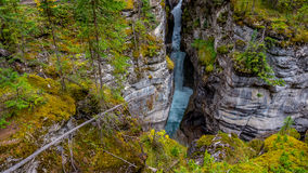 Maligne River as it Flows through the Canyon Stock Photography