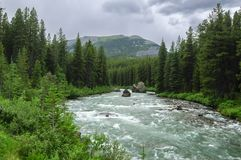 Maligne River, Jasper National Park, Canada. View of the Maligne River, located in Jasper National Park in Alberta, Canada Stock Photography