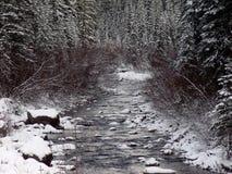 Malignemeer, Rocky Mountains, Westelijk Canada stock afbeelding