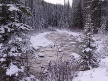 Malignemeer, Rocky Mountains, Westelijk Canada royalty-vrije stock foto's
