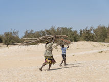 Malika, Senegal – July 31, 2014: Unidentified mother and son carrying filao branches on their head Royalty Free Stock Photos