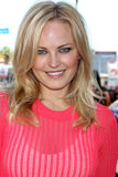 Malin Akerman. LOS ANGELES - FEB 22:  Malin Akerman at the Jennifer Aniston Hollywood Walk of Fame Star Ceremony at the W Hollywood on February 22, 2012 in Los Royalty Free Stock Photography