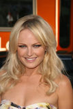 Malin Akerman Stock Image