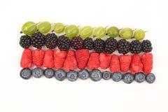 Malinki, agresty, czernicy i czarne jagody w rzędach, Fotografia Royalty Free