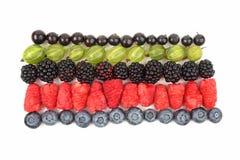 Malinki, agresty, czernicy, rodzynki i blueberrie, Fotografia Stock
